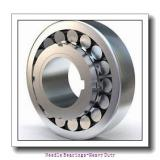 NPB HJ-122012 Needle Bearings-Heavy Duty